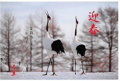 幸せを呼ぶ鶴