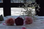 テーブルフォト(花 )