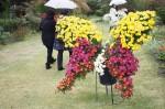 秩父宮記念公園12