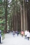 秩父宮記念公園2