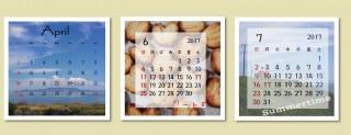 シャコラ カレンダー入り