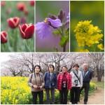 201704昭和記念公園(弥生台教室カメラ講座)2