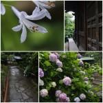 戸塚・畠中講座6/28撮影分1