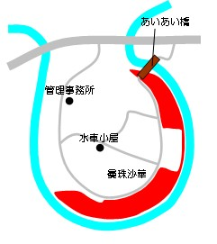 9月ピクニック【巾着田&長瀞ライン下り】情報その2
