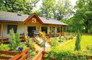 ガーデンレストラン桜_2