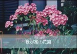 paso-sakuhinlist-04